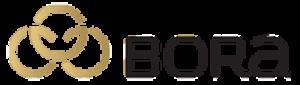 iod szkolenie logo BORA