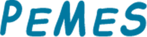 szkolenie rodo dla kadr logo pemes logo